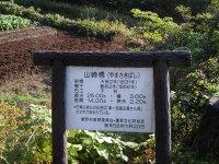 Yamasaki02